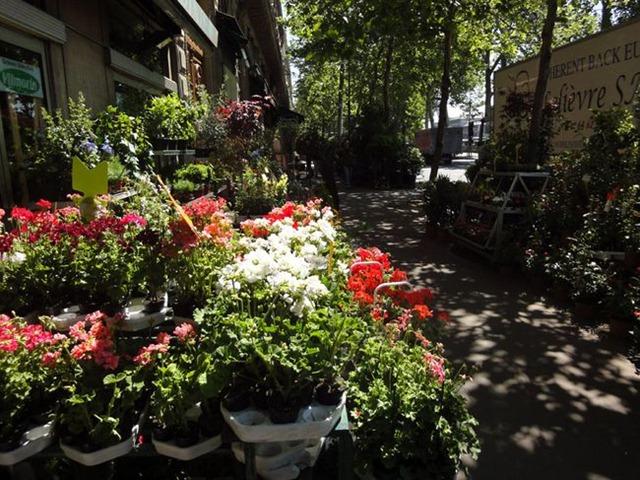 Jardins dans la ville paris en fleur - Quai de la megisserie ...